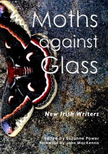 Moths against Glass